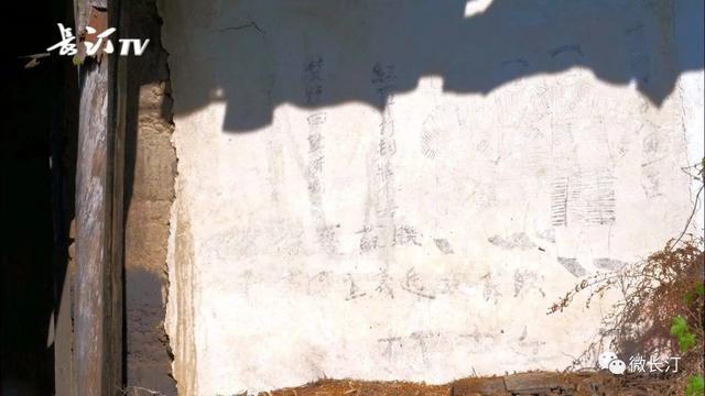 长汀铁漫画现珍贵的漫画墙壁(红色上的长发记红军校园吸血鬼图片