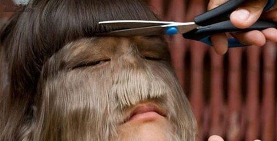 女生因返祖现象她全身是毛当剃掉女孩后让所的喜欢a女生一个男生表现毛发一个什么是上的...图片