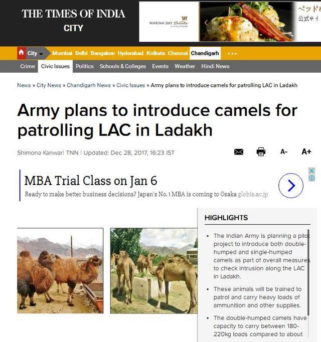 What?!印度陸軍考慮訓練駱駝,在中印邊界地區巡邏