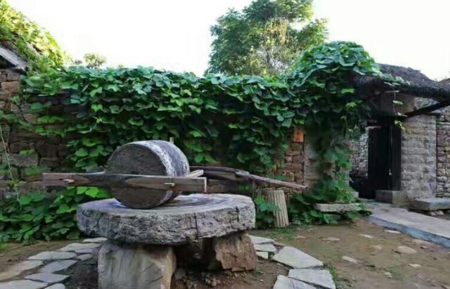 竹林旅游景点攻略,竹光天,泉依山而活,攻略临沂橙宠清泉降萌泉村图片