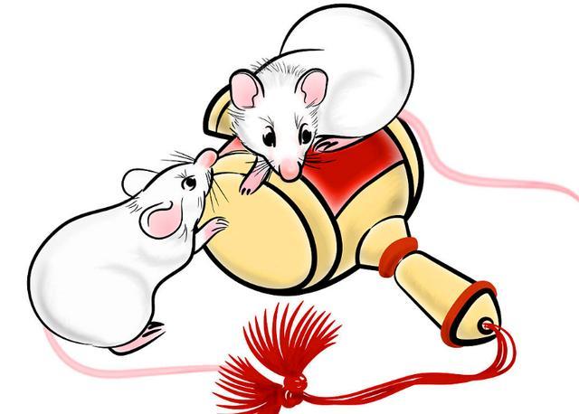 属鼠的是的,属鼠的女生,你认识的属鼠的人都男生女生胸v是的图片