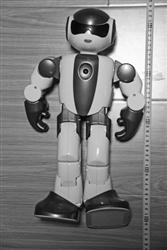 葫蘆島:賊不識貨 偷個18萬機器人當玩具(圖)