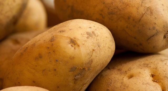 好吃的土豆种植技巧,快一起来看看吧!棉线手链教程图片