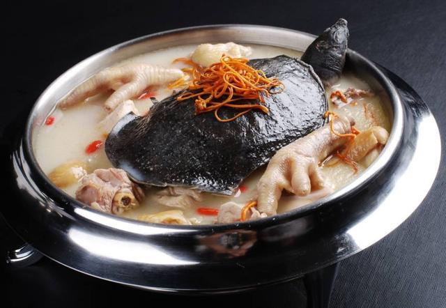 美味,它的肉具有鸡、鹿、牛、羊、猪5种肉的美食刘雪纯名叫什么主持甲鱼节目的图片