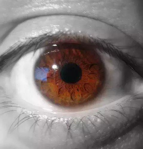 澳门赌场开户:眼睛有多少种颜色?无法解释