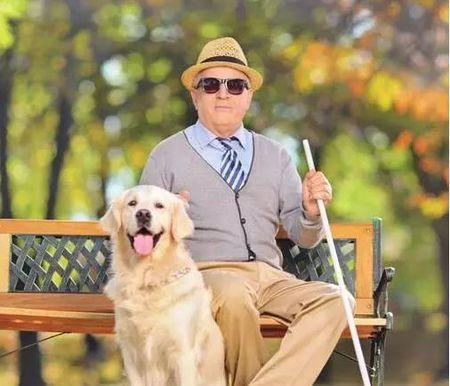 澳门金沙网址:盲人的听力比正常人更好?