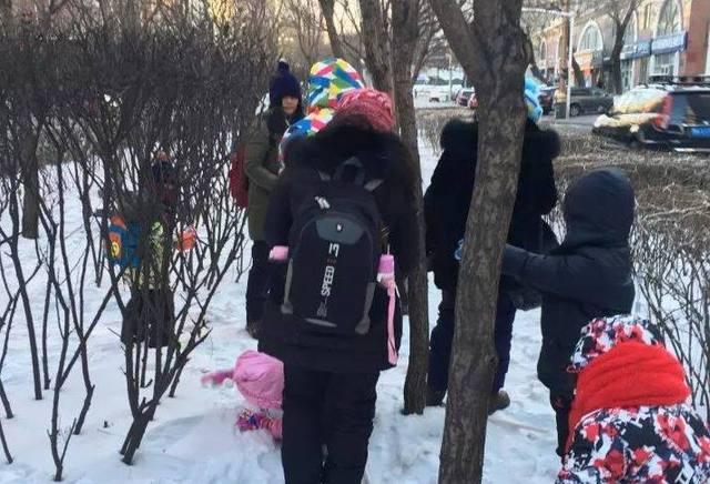 东北之旅6日攻略,哈尔滨雪乡游玩雪国(一)冰雪游十渡日2攻略图片