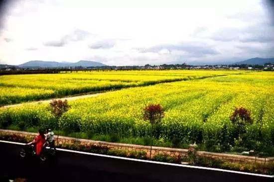 榆林这三个乡村入选陕西省十大最美地方、最美穿越颜倾清欢美食星际图片