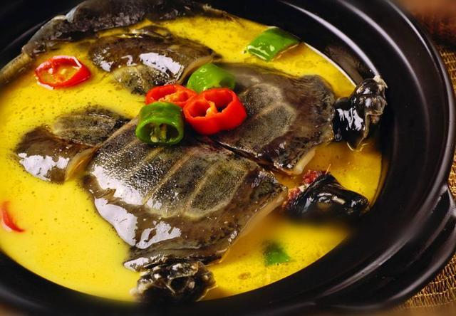 美味,它的肉具有鸡、鹿、牛、羊、猪5种肉的甲鱼固阳美食街图片