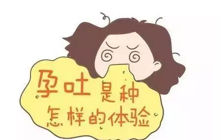 澳门金沙开户:孕吐太难受了怎么办?除了忍!