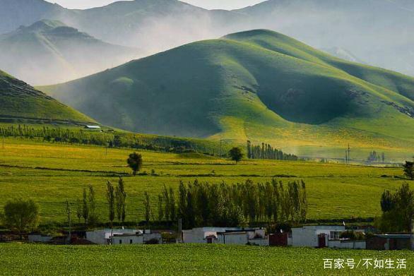 那些你没见过的新疆风情本土,来v风情一下吧,千美食送客服电话图片