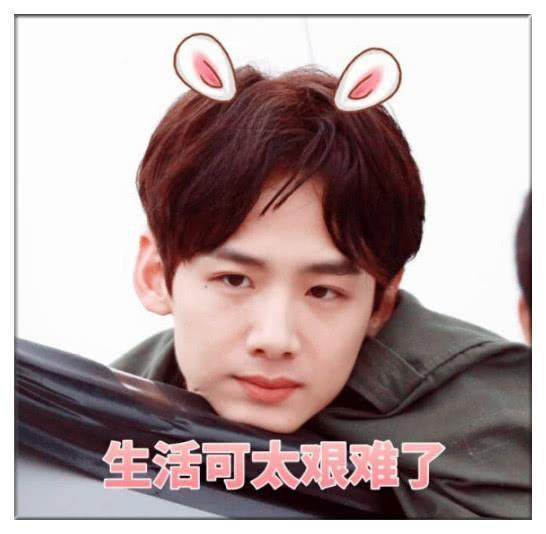 白敬亭+搞笑表情:我找了半生的春天,你一笑三连表情包制作在线图片