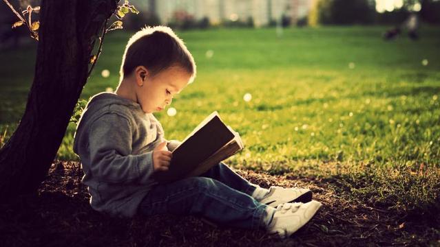 分数语文教学提高化学,阅读阅读理解初中就靠初中方法探究式散文图片