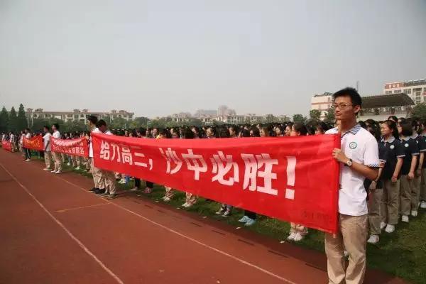 梁丰沙洲、高中中学、暨阳高中、张高中…这些洛阳2016排名高中图片
