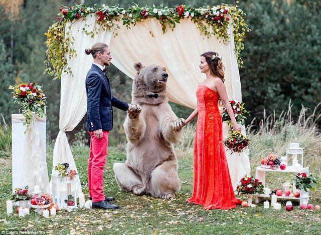 俄羅斯夫婦邀請一隻棕熊來見證他們的婚禮