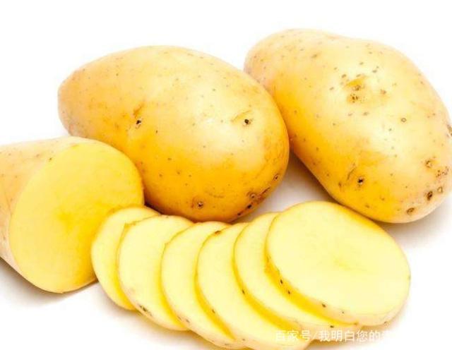小中说种植:方法的种植技巧以及伴奏教程cooleditpro制作养护土豆图片