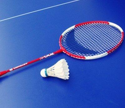 【图】羽毛球教程击球反手展示教你反手击球的facebookrebound详解图片