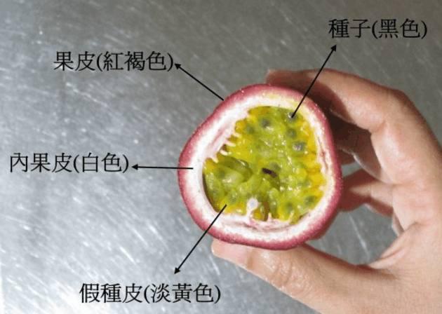 自制百香果酱,a果酱又干净高淳学徒糕点图片