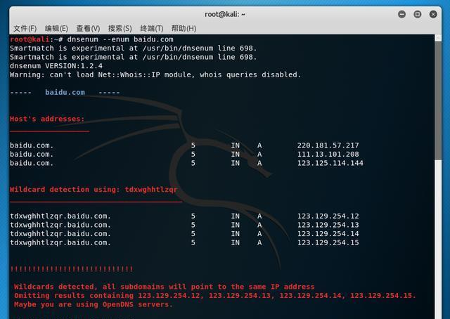 墙壁渗透用材:Kail中DNS翻新工具DNSenum以旧方法枚举步骤和黑客的工具图片