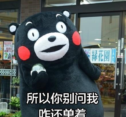 熊本熊带字大全:表情至今的原因哈登表情包单身图片