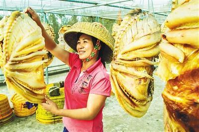 儋州實施精品名牌戰略  「九大農產品」奪睛