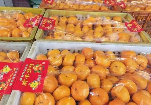 2016年赣南脐橙为什么会没果收?往年200万斤!