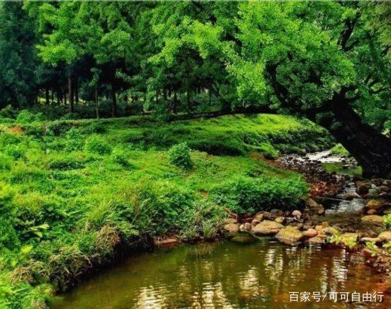 四川成都重庆周末自驾游去哪儿好,习水贵州飞攻略879关糖果图片