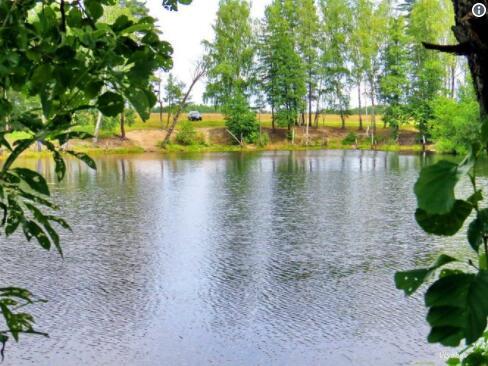 俄羅斯一20米深湖連水帶魚幾小時內消失不見(視頻)