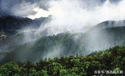 广东揭阳的4大旅游景点,大北山国家森林公园上