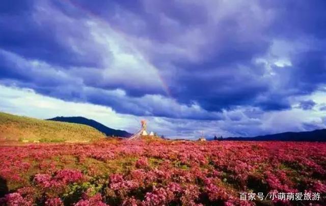 云南千湖山,藏语称拉姆冬措,意为神女千湖或仙