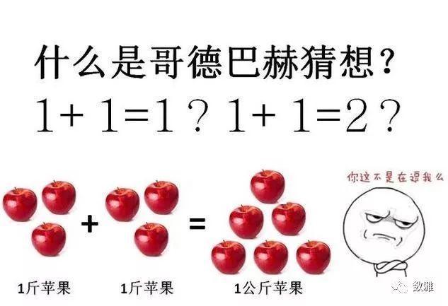 国人所耳熟的哥德巴赫猜想,就是证明1+1=1,1+