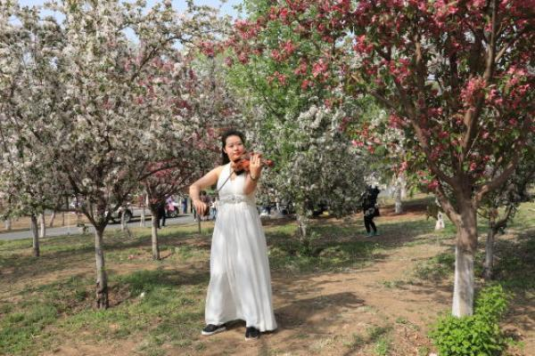 五一假期遼寧接待遊客1142萬人次,旅遊收入超95億元