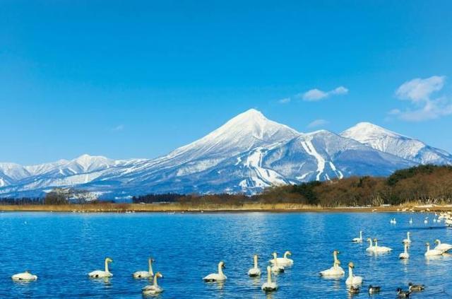 好消息!日本5年签证条件放宽!樱花红叶扫货随