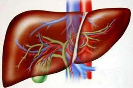 肝腹水可以治好吗 ?肝癌晚期注重的是生活品质