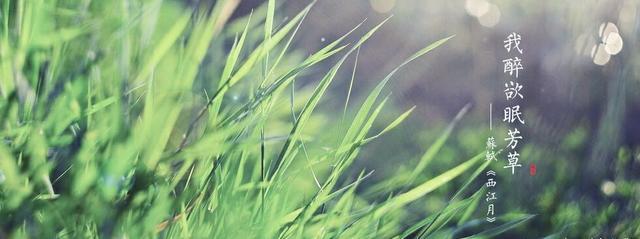 北宋苏轼的传奇人生,是什么让他淡然处之,他的