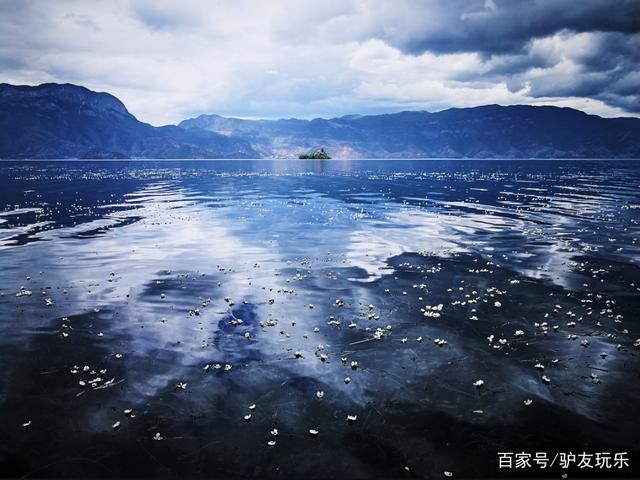 泸沽湖里生长的水性杨花竟然可以食用,你吃过