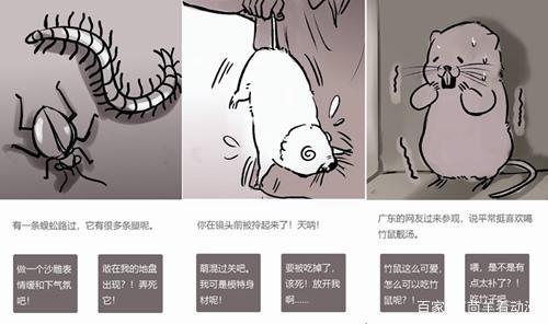 《竹鼠:活下去》试玩版分数下跌,但制作组真的