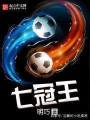 足球小说推荐:教练、宅男、技术流、系统流、