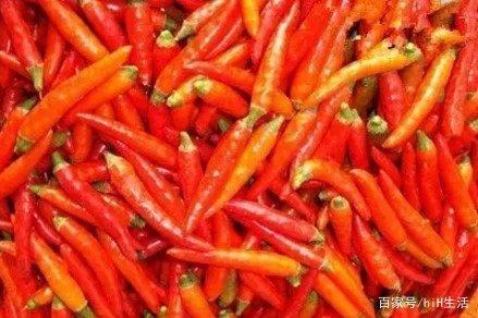 辣椒辣度排名,四川人都很少有人能承受,吃过的