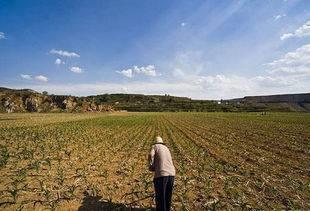 刚发布的三权分立,这对农民来竟是福利满满?