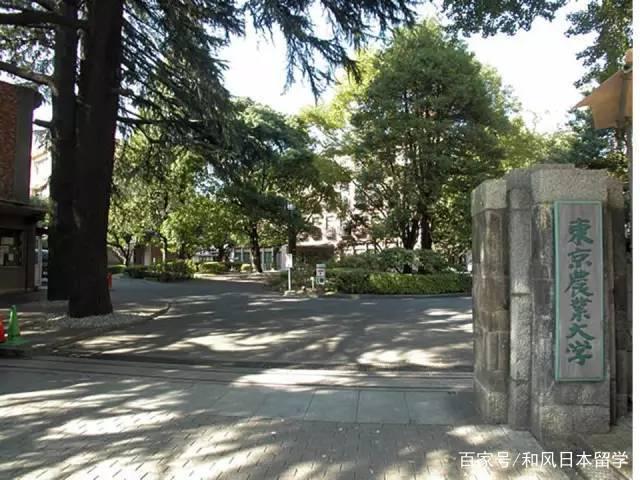 那些容易被混淆成国公立大学的日本私立大学
